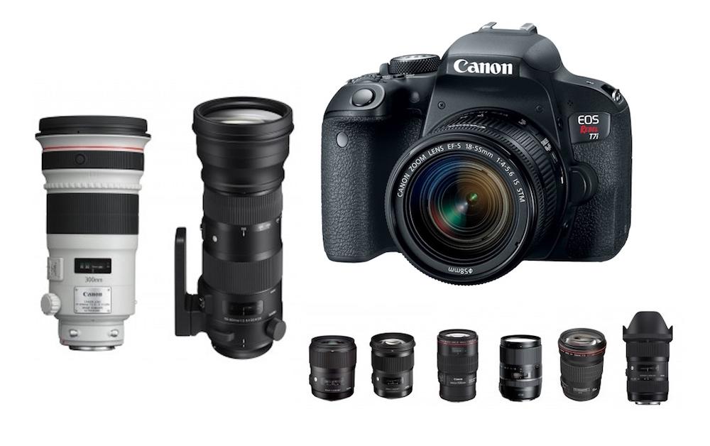 Best Lenses for Canon EOS Rebel T7i